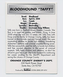 Taffy's Trading Card - Back